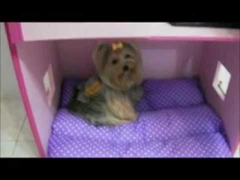 Casa de cachorro - Mansão rosa - Vicky Nina