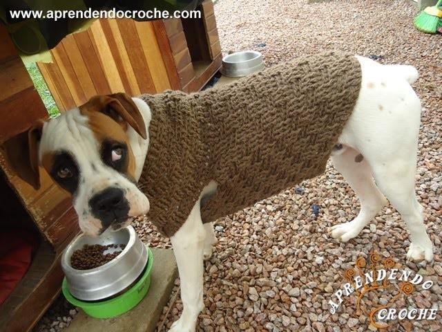 1º Parte - Roupinha de Croche para Cachorro Boxer - Aprendendo Crochê