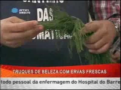 Cosméticos caseiros com ervas aromáticas
