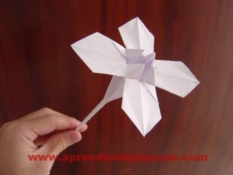 Origami Flower - Flor 2