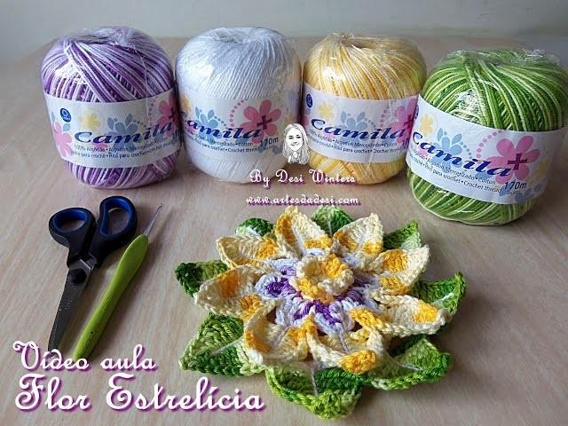 Vídeo Aula Flor Estrelícia - Crochê -  Desi Winters