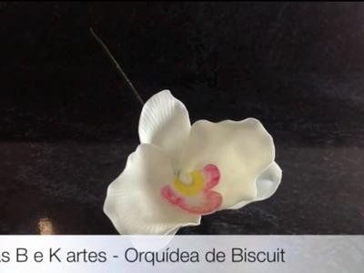 Dicas B e K artes - Orquídeas de Biscuit