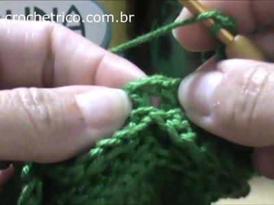 Crochê - Porta Mamadeiras em Ponto Escama - Parte 02.02