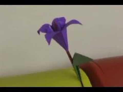 SEACOM 2007 - Flor
