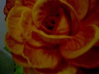 Curso de flores