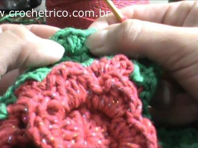 Crochê - Tapete Caminho de Flores - Parte 06.06
