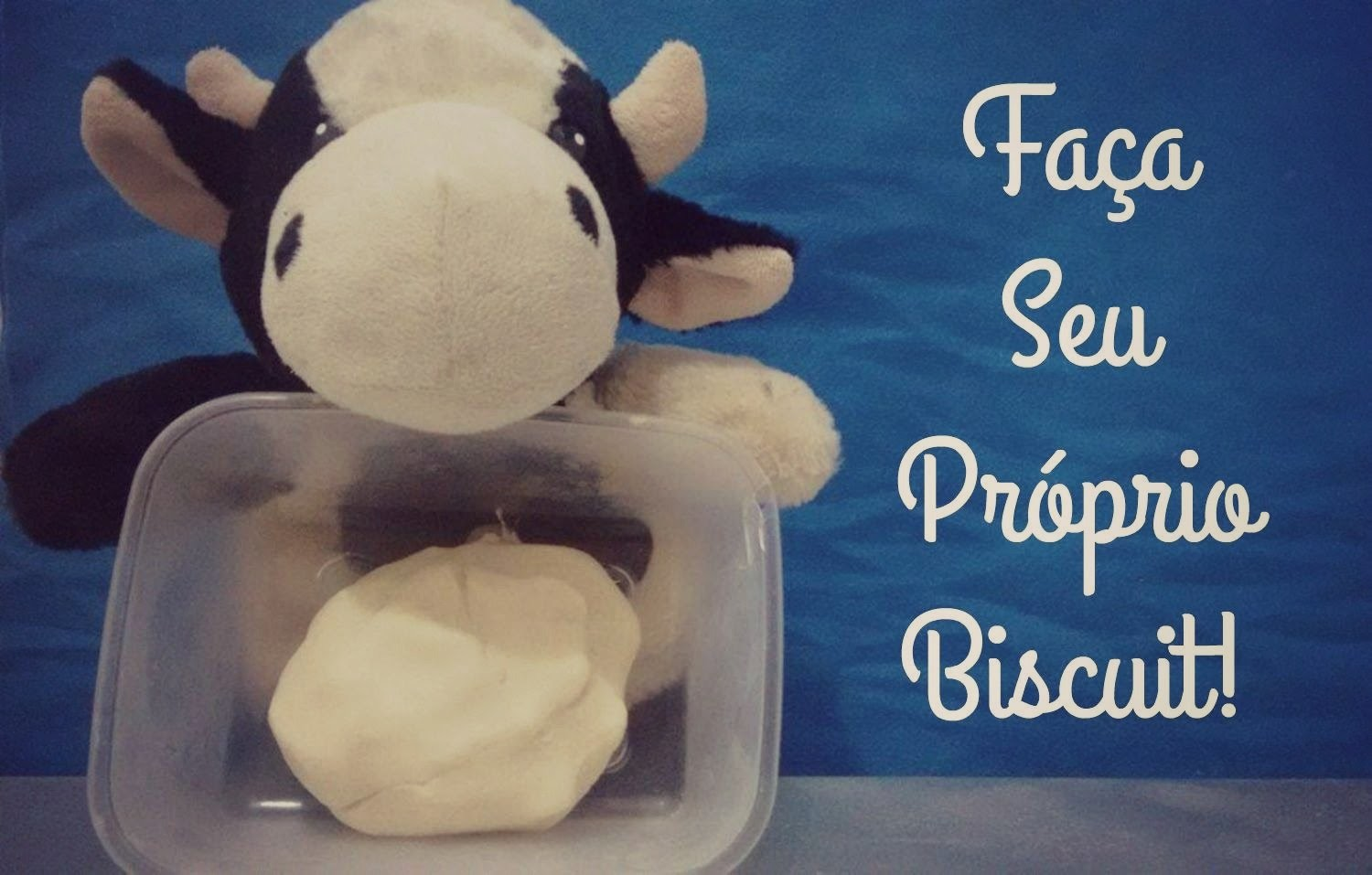 DIY Biscuit