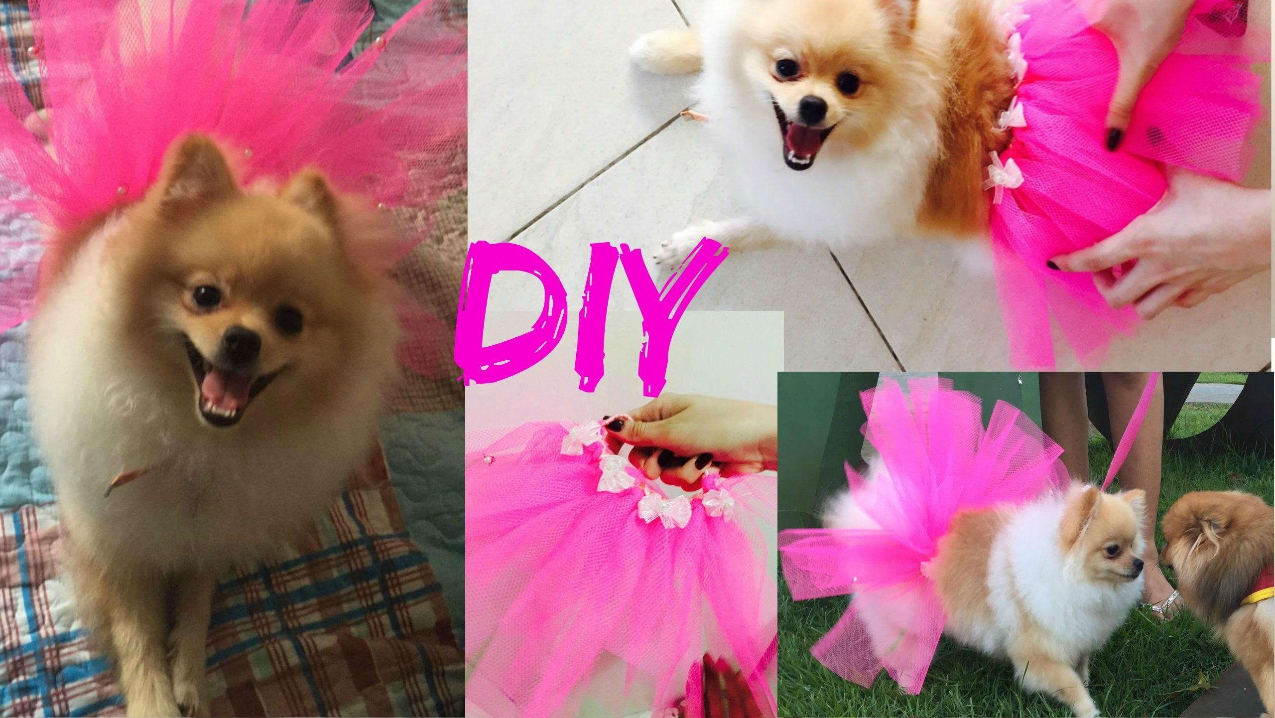 Faça você mesma (DIY) Fantasia de bailarina sem costura (para pets)