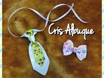 Aula 2- Laço e gravata para bichinhos e bebês- Pap com Cris Albuque