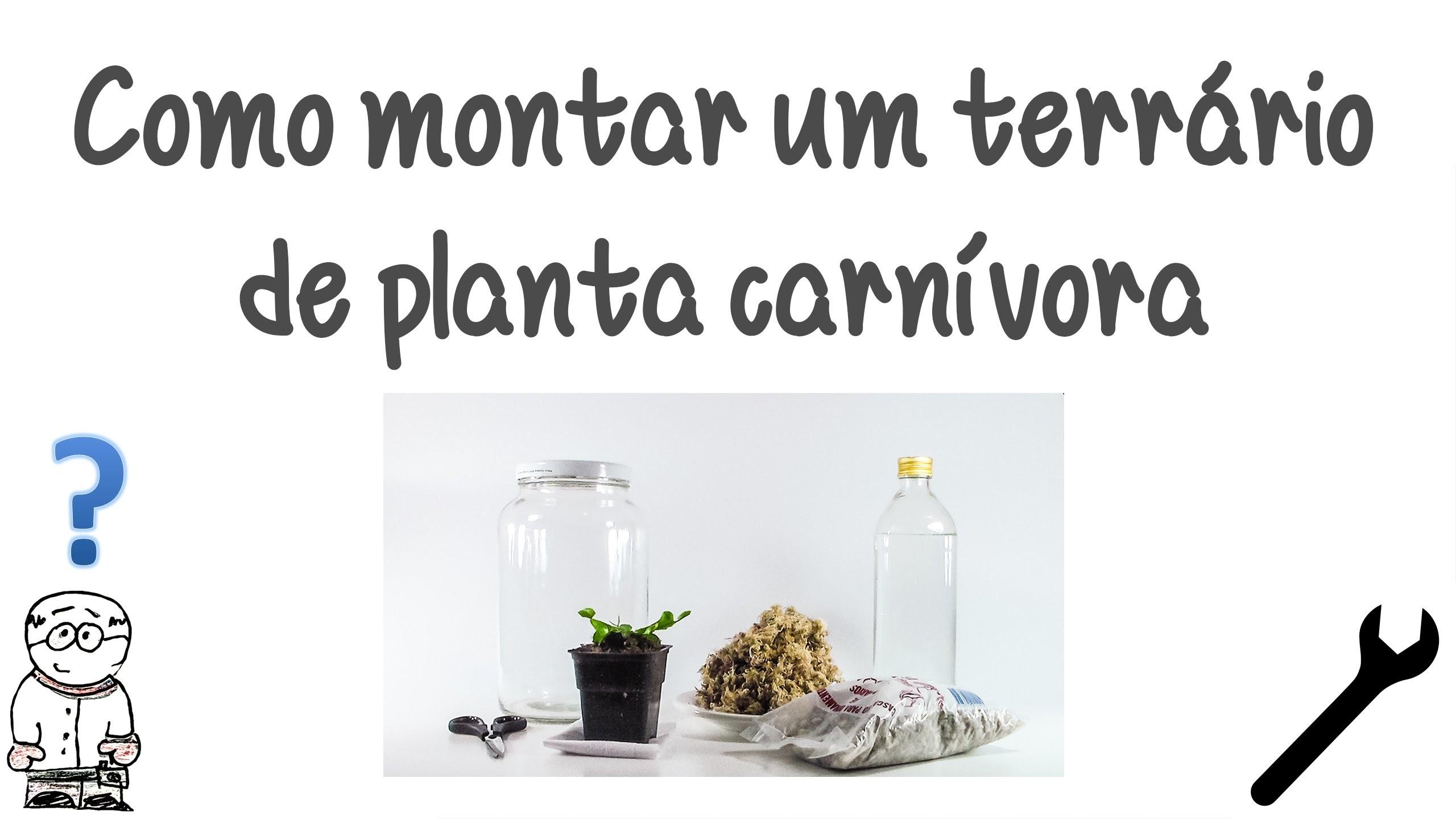 Como montar um terrário de planta carnívora. DIY How to make a venus flytrap terrarium