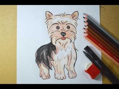 Como desenhar um cachorrinho Yorkshire