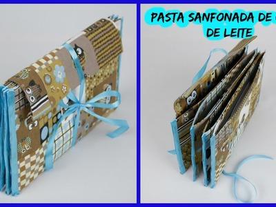 Pasta Sanfonada de caixa de leite e coruja  - 2