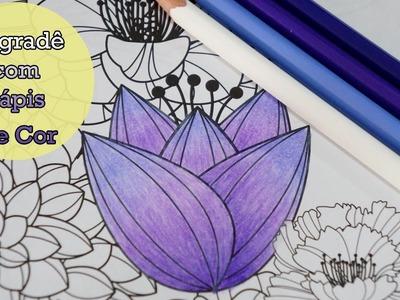 Degradê com Lápis de Cor | Colorindo Jardim Secreto.Jardim dos Sonhos - Por Jéssica Freitas