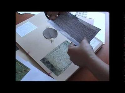 O Meu Herbário * My Herbarium (Part 2)