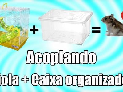 DIY #5: ACOPLANDO - Gaiola com Caixa organizadora (HAMSTERS)