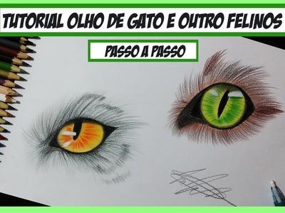 Como desenhar Olho de Gato e outros Felinos - Passo a Passo (How to draw cat eyes)