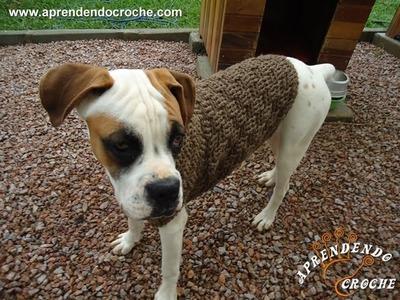 2º Parte - Roupinha de Croche para Cachorro Boxer - Aprendendo Crochê