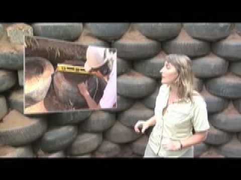 A Casa Orgânica - Vídeo da Construção 1