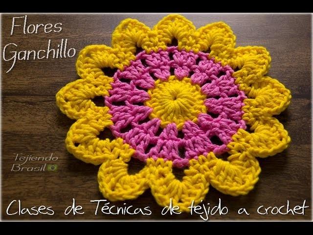 Tejiendo Brasil - Flores de Ganchillos coloridas