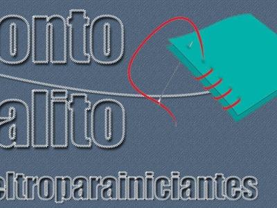 Ponto Palito -Overcast Stitch - Feltro para iniciantes - HD