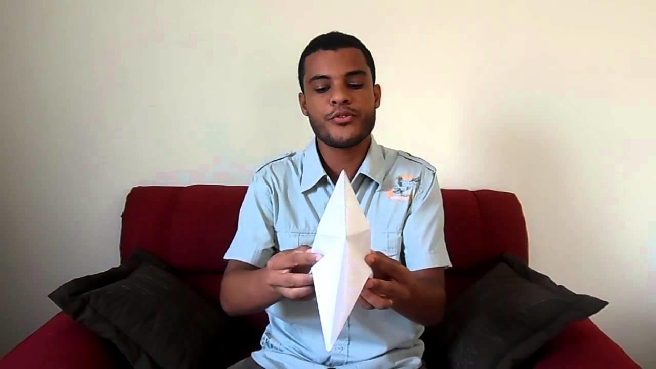 As dobras da vida (origami tsuru) - Nicolas C. Sales