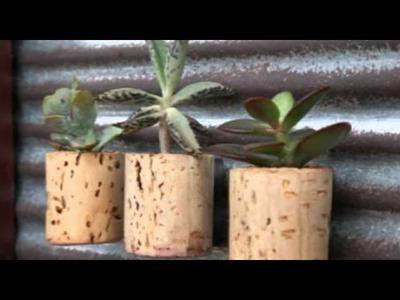 Faça Você Mesmo: Mini Vasos com Rolhas