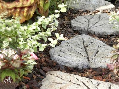 Passo a Passo Caminho em formato de folha feito com cimento