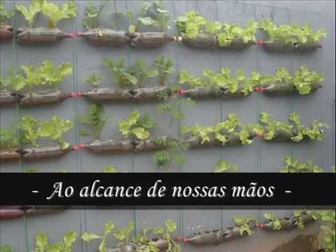 Horta orgânica e ecológica. Organic and ecological vegetable garden