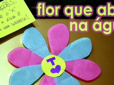 Cartão da flor de origami que abre na água (cartão para o Dia das Mães)