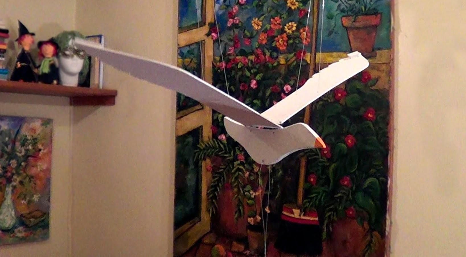 Gaivota - Flying bird