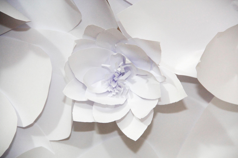 DIY: Flores de Papel Para Decorar Parede (Festas, noivado, chás, casamento, 15 anos)