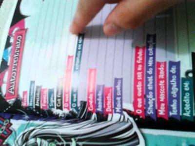 Reviw:meu scrapbook secreto
