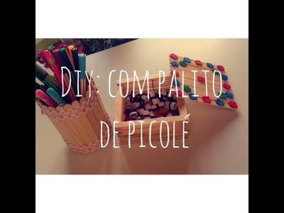 DIY: Decoração com palitos de picolé!