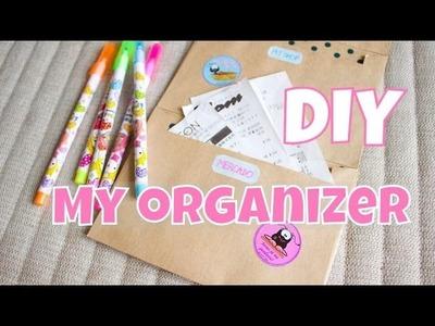 DIY- My organizer - faça voce mesma organizador
