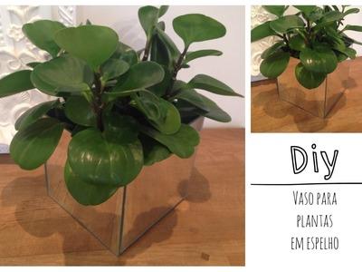 Diy-vaso em espelho para plantas!Muito fácil