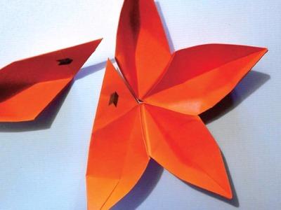 Montagem do origami Pétala (Stop Motion)