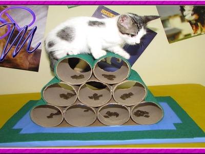 DIY: Brinquedo para estimular a inteligencia dos gatos