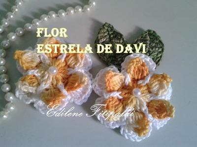 """Flor Estrela de Davi #Coleção """"Minhas flores em Crochê"""""""