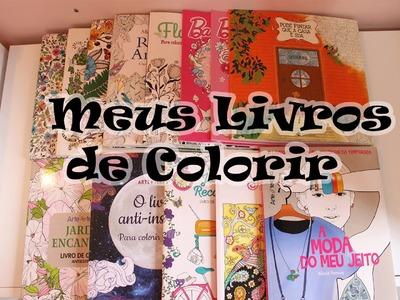 Meus Livros de Colorir ( Atualizado)