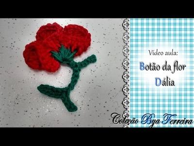 Botãoda flor dalia