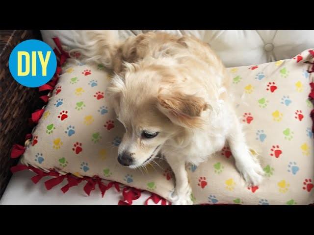 DIY: Caminha para cachorro! • Fácil e sem costurar