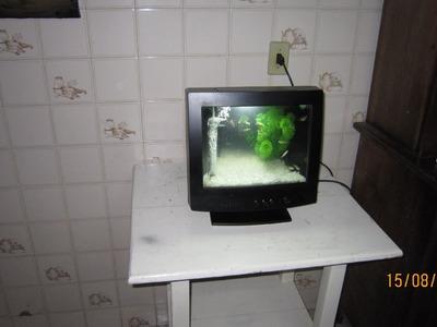 """Aquario feito com monitor de computador """"TV"""""""