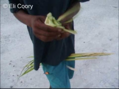How to make a rose from palm leaves