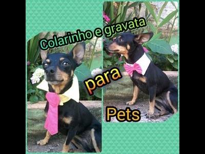 DIY - colarinho e gravata para cachorro .  pet . dog