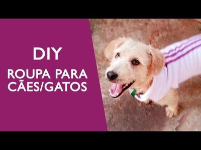 DIY - Roupa para Cães.Gatos