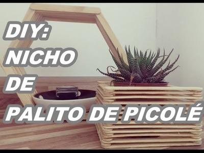 DIY: NICHO DE PALITO DE PICOLE