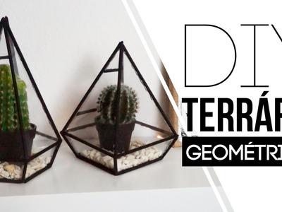 DIY - Terrário Geométrico  | Carol Ramos