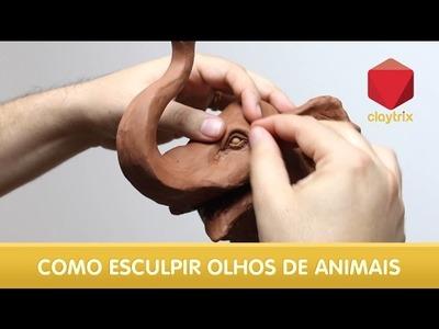 Quicktrix - Como esculpir olhos de animais | Claytrix