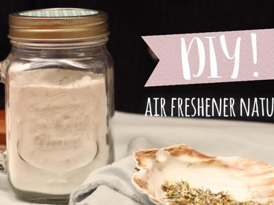 DIY: Como fazer um aromatizador de ambientes | WESTWING
