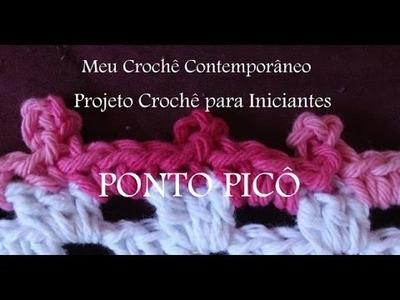 Projeto Crochê para Iniciantes - PONTO PICÔ